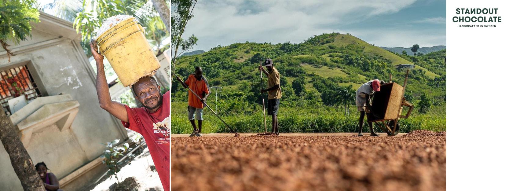 Produzenten-Standout-Haiti